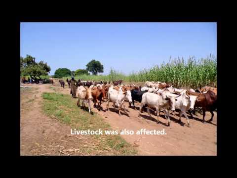 Floods in the North of Benin 2012, CARE Benin-Togo (English)