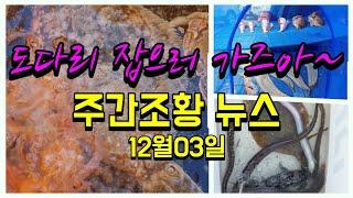 [처녀물고기] 도다리 …