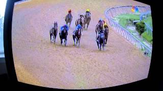 138th Preakness Stakes 2013 (Full Race)