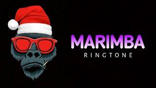 Dance monkey ringtone #tiktoktrending2020 #marimbaringtone #famousringtone 👇download link 👇 https://drive.google.com/file/d/1-bhmtcfghd2vzngwcqddqwq1kay4gut0...
