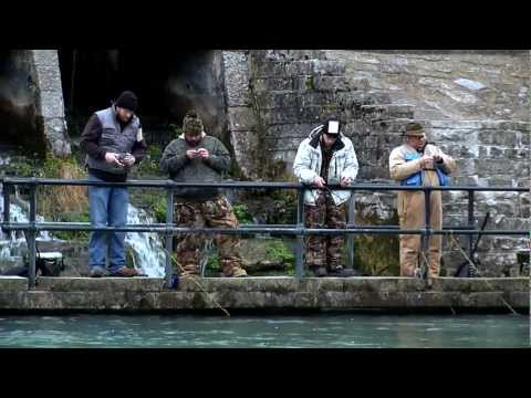 Discover Trout Fishing In Missouri