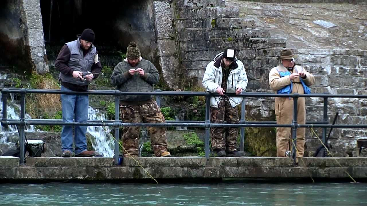 Discover trout fishing in missouri youtube for Fishing in missouri