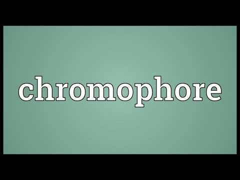 Chromophore Meaning