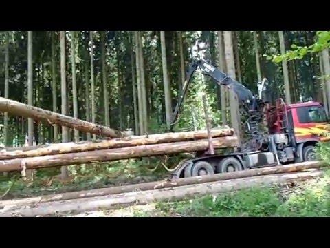 Загрузка лесовоза.Виртуозная работа водителя.