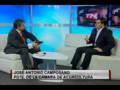 José Antonio Camposano