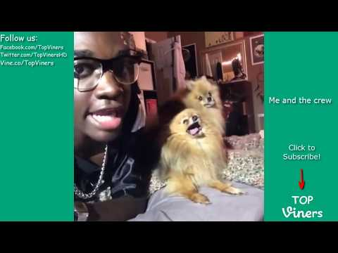 Rickey Thompson Vine Compilation with Titles! BEST Rickey Thompson Vines Top Viners ✔