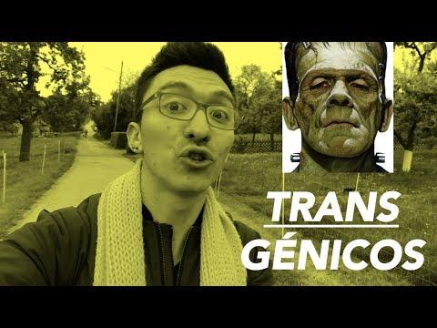 Dr. Nico Soto