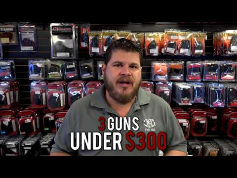 Best Bang for Your Buck: 3 Great Guns Under $300