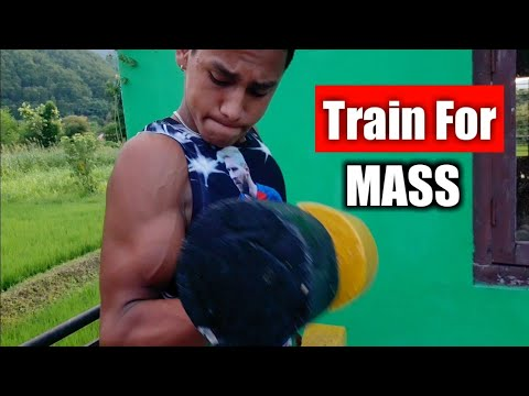 5 Bicep Workout For Mass | Tarin For Mass | ANISH FITNESS |