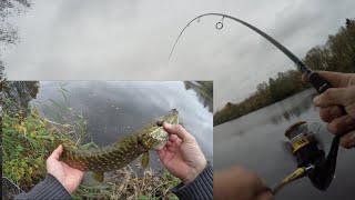 Новое озеро Рыбалка на щуку со спиннингом Рыбалка на озере 2 часть Ловля щуки на джиг