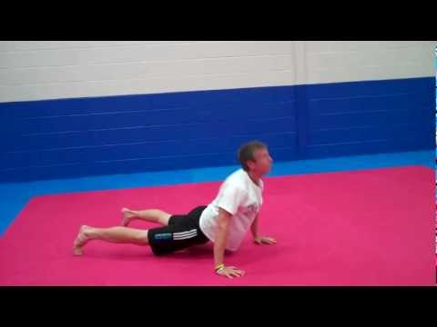 Bedlington Personal Trainer | Divebomber / Snake Push ups