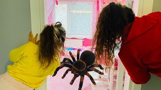 Aslı Yaren and Mommy Adventures Play Toys