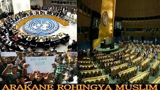 Today 18 November 2018#Burmese News Translation in Rohingya Language By Mr Sherif Arakani