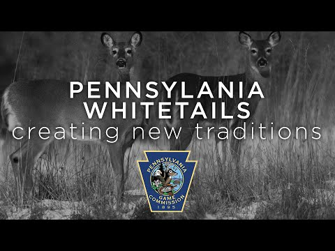 Pennsylvania Whitetails: Creating New Traditions (c) 2000