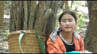 Beutiful Hmong Girl / Nkauj Nag Vwj Lub Neej Toj Siab