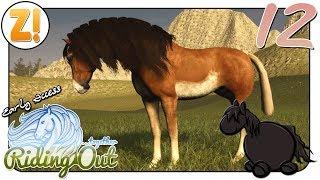 Riding Out STAFFEL 2 Vom Baumodus genervt and ein besonderes Pferd 12  Lets Play DEUTSCH