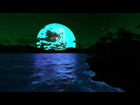 Mitchel Evan - Leeches (Lyric Video)