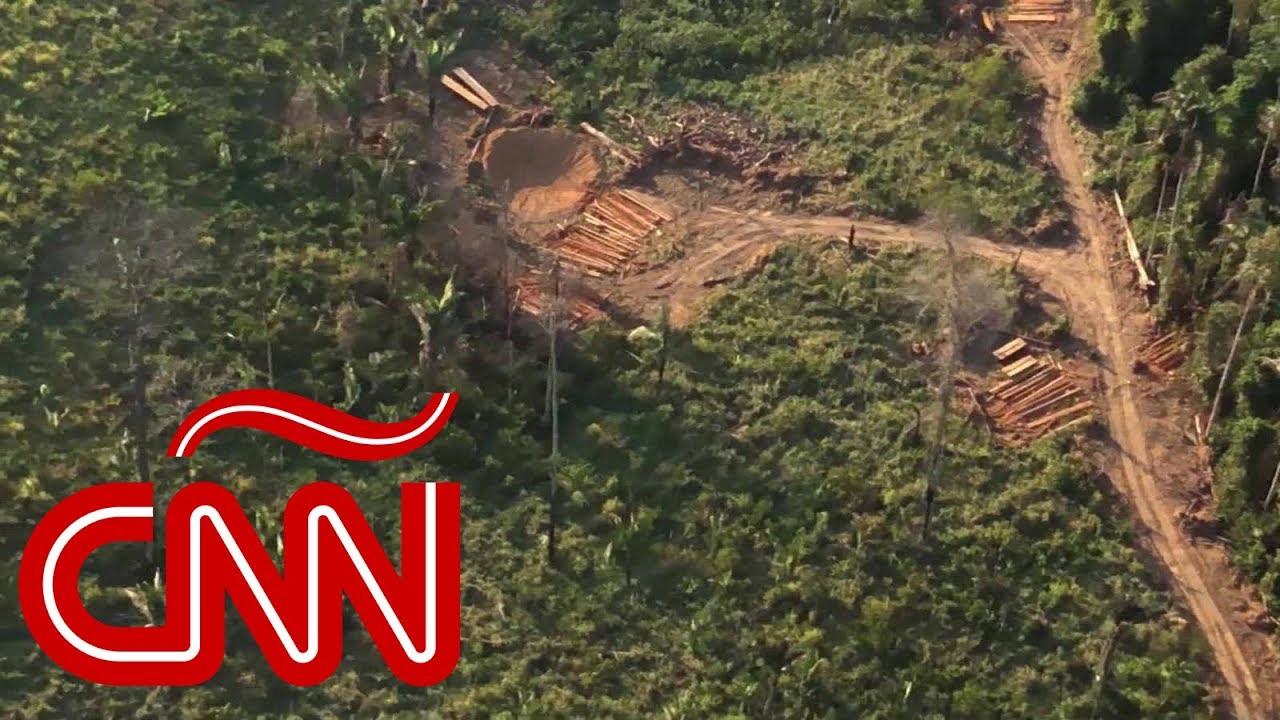 Amazonas: Brutal destrozo medioambiental, ¿deforestación sin fin?