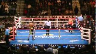 Sergio Gabriel Martinez vs Paul Williams