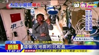 20161118中天新聞 神舟十一號回地球 帶回五隻太空蠶寶