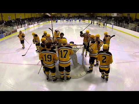 Eveleth/Gilbert/MesabiEast Hockey vs Virginia2015