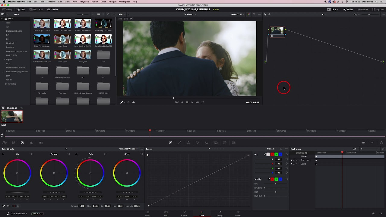How to Import and apply LUTs in DaVinci Resolve | Tutorial