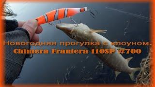 Новогодняя прогулка с клоуном Chimera Frantera 110SP 700