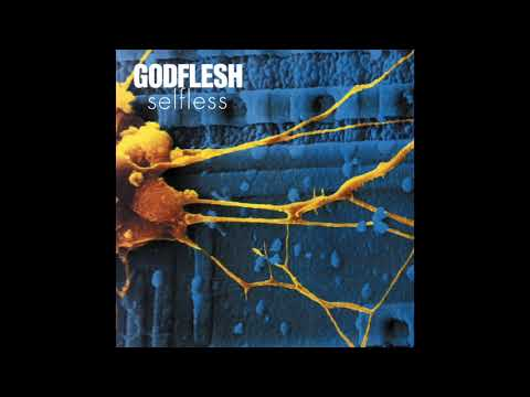 Godflesh - Heartless
