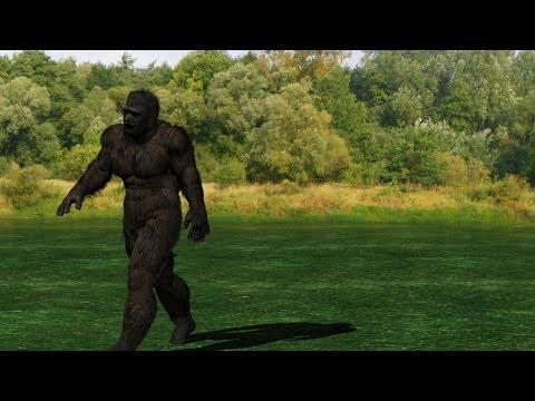 Menacing Animated BIGFOOT/Sasquatch Creature! (CGI for New Documentary)