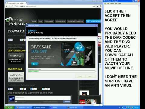 Divx Web Player