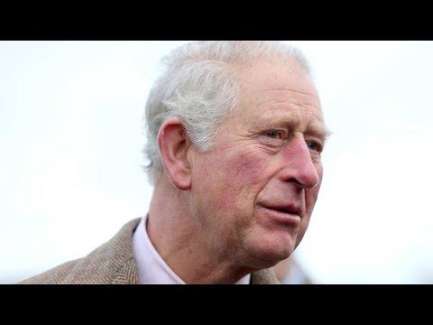video: Prince Charles speaks of his despair at'appalling horror' of Australian bushfires