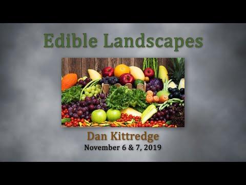 Dan Kittredge BSC Nov 2019 Part 2   Principles of Biological Systems  vo2