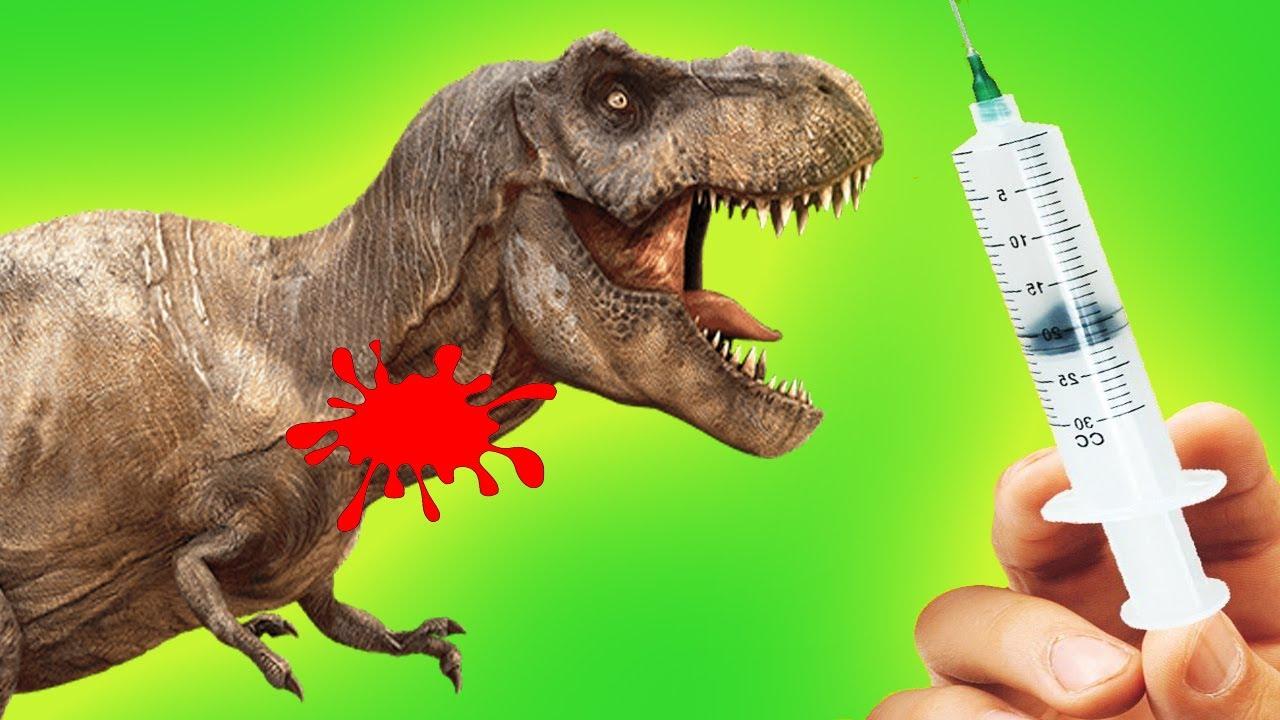 Doctor De Dinosaurios Mi Dinosaurio Esta Enfermo Divertidos Dibujos Para Ninos Youtube Todas las noticias sobre dinosaurios publicadas en el país. doctor de dinosaurios mi dinosaurio esta enfermo divertidos dibujos para ninos