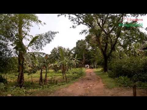 Rema-Kalenga Wildlife Sanctuary (রেমা–কালেঙ্গা বন্যপ্রাণী অভয়ারণ্য)