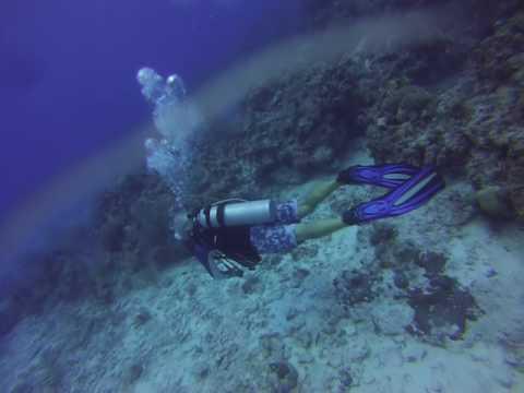 grand cayman dive 4 part 1