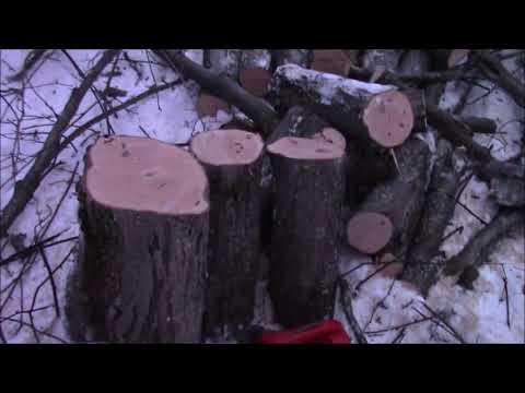 Holzfforma - Myhiton
