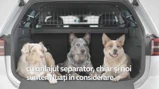 Accesorii pentru patrupedul tau - Autoworld Volkswagen