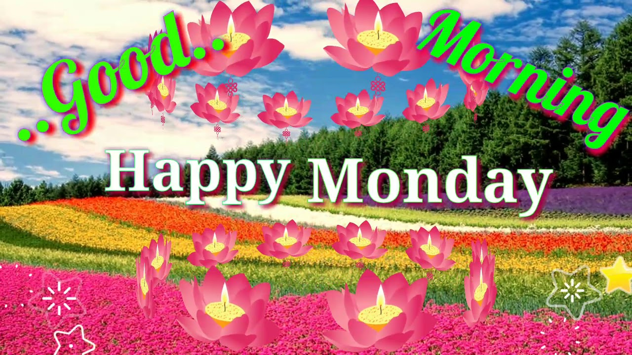 Good morning video - Happy Monday, Greetings, Hindi Quotes ...