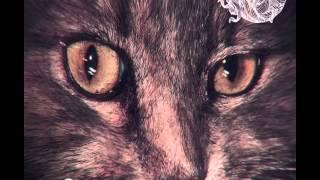 Fran Von Vie - Lead Me Back (Trikk Remix) [Suara]