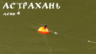 Астрахань. День 4. Астраханский ПОПЛАВОК. Рыбалка на сазана | Экскурсия по базе