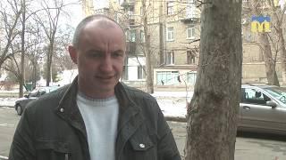 У Миколаєві виявили двох собак із дирофіляріозом