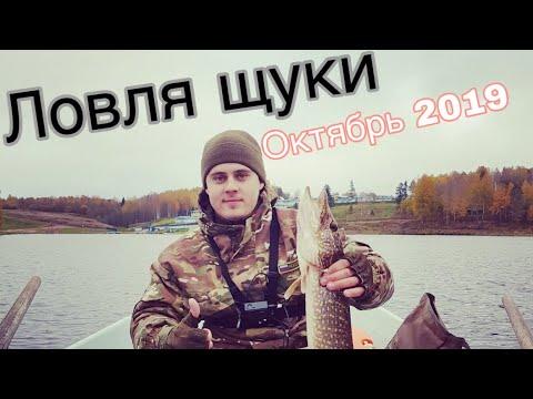 Ловля щуки осенью на озере в Ленинградской области.  Ловля щуки в октябре 2019. Рыбалка осенью.