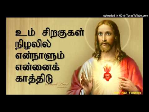 உம் சிறகுகள் நிழலில் என்நாளும் என்னை: Song : Um Siragugal Nizhalil - TAMIL CHRISTIAN SONGS Send your Suggestion - jesuslovedotin@gmail.com Check other Songs: http://www.youtube.com/user/gjohnpaul by JOHN PAUL FERNANDO - MANAPAD