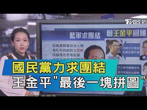 勸王金平21對談國民黨力求團結 王金平「最後一塊拼圖」