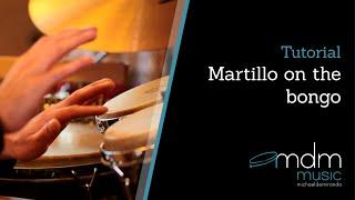 Martillo on the bongo.mov