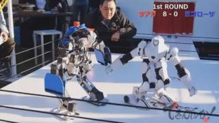 Robot Fighting Championship