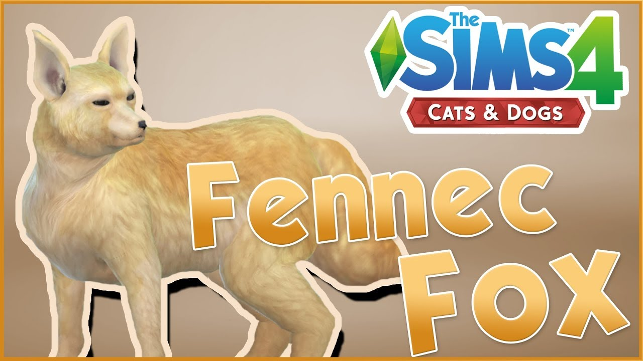 A Wild Fennec Fox Arrives Sims 4 Cats Dogs