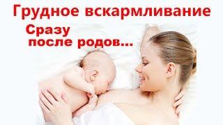 Кормим грудью в родильном зале... Зачем ?