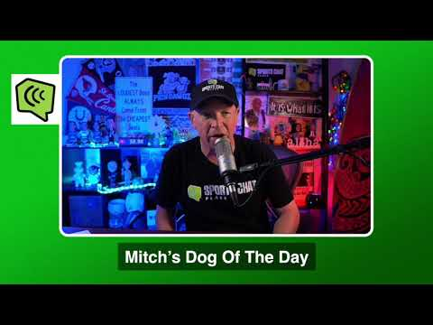 Mitch's Dog of the Day 1/23/21: Free College Basketball Pick CBB Picks, Predictions and Betting Tip