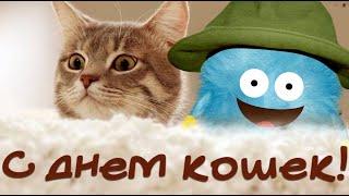 С днем кошачьим поздравляю! Кошку с праздником поздравь |.ЯША ПозравлЯША #Мирпоздравлений